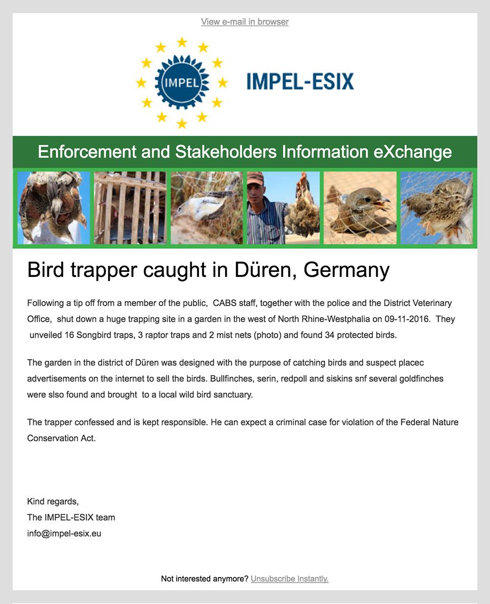 impel-esix-newsletter-full